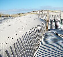 Fences Shadows and Sand Dunes by MotherNature