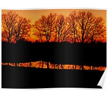 Cow Pond at Sunset Poster
