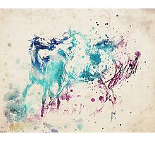 Watercolor Horses Photographic Print