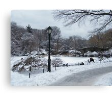 Central Park In Snow, New York City Canvas Print