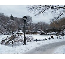 Central Park In Snow, New York City Photographic Print
