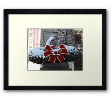 New York Public Library Lion After A Snowfall, New York City Framed Print