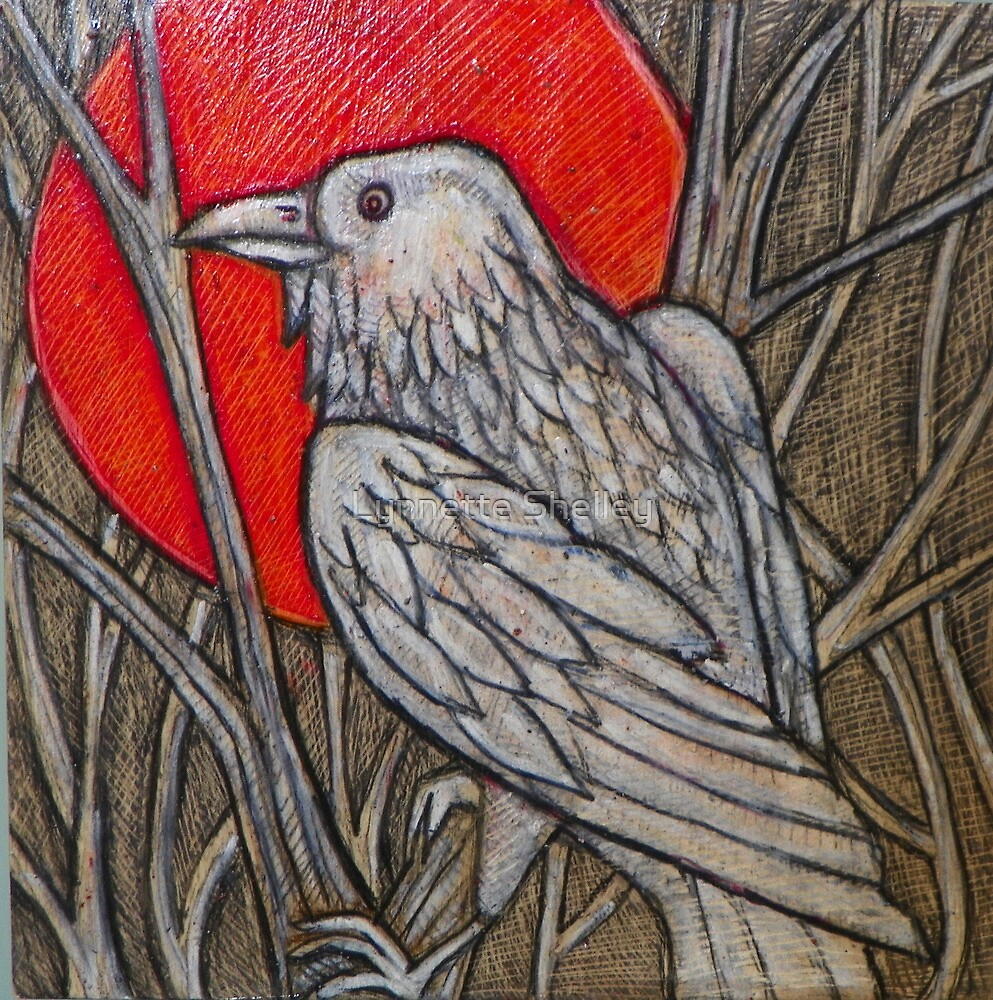 The White Raven by Lynnette Shelley