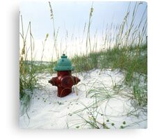 Fire Hydrant in Sea Oats Canvas Print