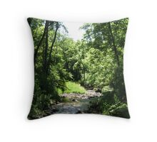 Forest Stream in Summer Throw Pillow