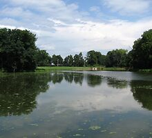 Franklin Creek Pond in Franklin Grove by Gu88dek