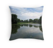 Franklin Creek Pond in Franklin Grove Throw Pillow