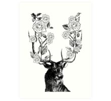 The Stag and Roses | Black and White Art Print