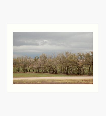 Capturing the Wind Art Print