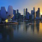 Marina Bay, Singapore at sunset  by Ralph de Zilva