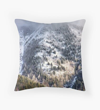Cold Mountain Throw Pillow