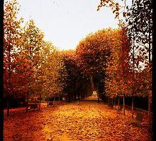 Autumn in Garden by VinieBoutin