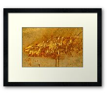 Rusty dust storm Framed Print