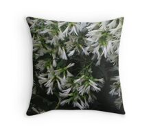 Whirlwind Of White Throw Pillow