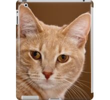 The ruler of our home iPad Case/Skin