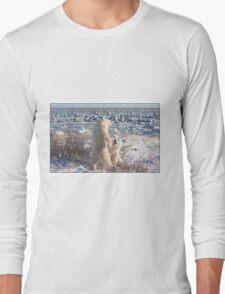2015 01 Polar Bears Play Long Sleeve T-Shirt