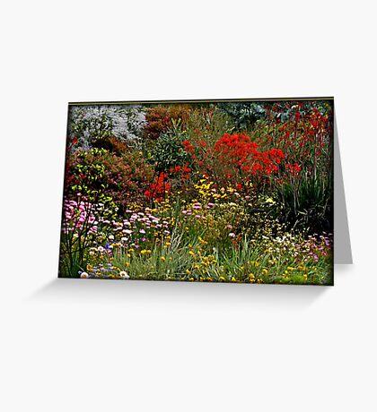 Wildflowers in Western Australia Greeting Card