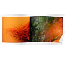 orange fusion Poster