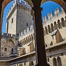 France. Avignon. Papal Palace. by vadim19