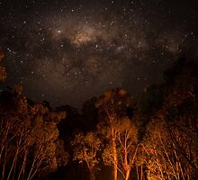 Mitta Mitta Nights by Anja Fuechtbauer