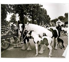 Travellers Way (Appleby Horse Fair) Poster