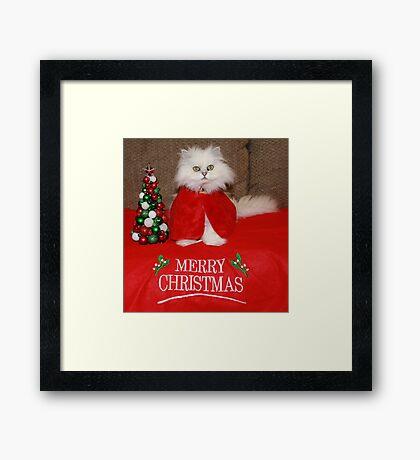 Waiting for Santa Claws Framed Print