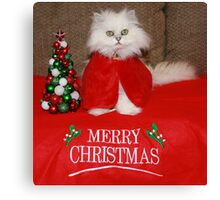Waiting for Santa Claws Canvas Print