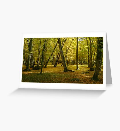Autumn in the forest of Chenonceau Greeting Card
