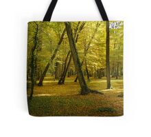Autumn in the forest of Chenonceau Tote Bag
