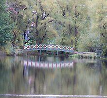 Bridge Over Water by Peter Vincent