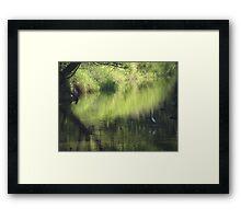 Riverscape with birds - Lado del rio con aves Framed Print
