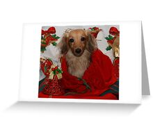 Dog in Christmas Sack Greeting Card