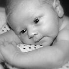 Baby George  by Evette Lisle
