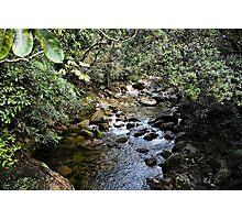 Rex Creek, Mossman Gorge, Queensland Photographic Print