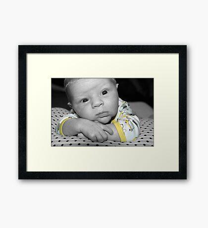 Georgey Boy  Framed Print