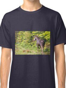 Bull Moose in Maine Classic T-Shirt