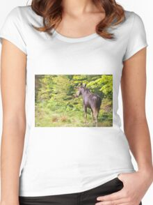 Bull Moose in Maine Women's Fitted Scoop T-Shirt