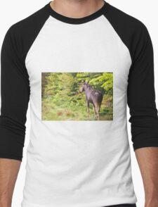 Bull Moose in Maine Men's Baseball ¾ T-Shirt