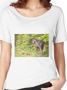 Bull Moose in Maine Women's Relaxed Fit T-Shirt