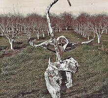 Sculpture in Orchard by Diane  Kramer