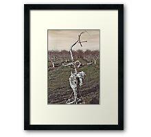 Sculpture in Orchard Framed Print