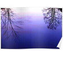 Pond Reflection at Dusk Poster