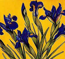 Dutch Iris by YouBeaut Designs