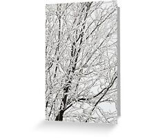 Winter's Paintbrush Greeting Card