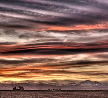 Colorado Sunset Paint Brush by Gregory J Summers