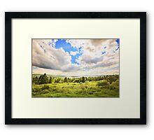 Sunny Lakeside Landscape Framed Print