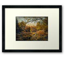 The Russet Garden Framed Print