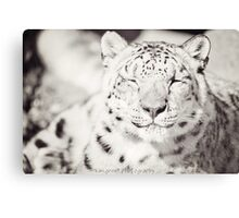Black and White Snow Leopard Canvas Print