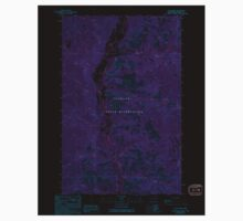 USGS Topo Map Washington State WA Louie Creek 242076 1989 24000 Inverted Baby Tee