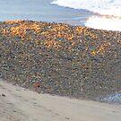 The ocean brought some gravel - El mar aportó la grava, Puerto Vallarta, Mexico by PtoVallartaMex